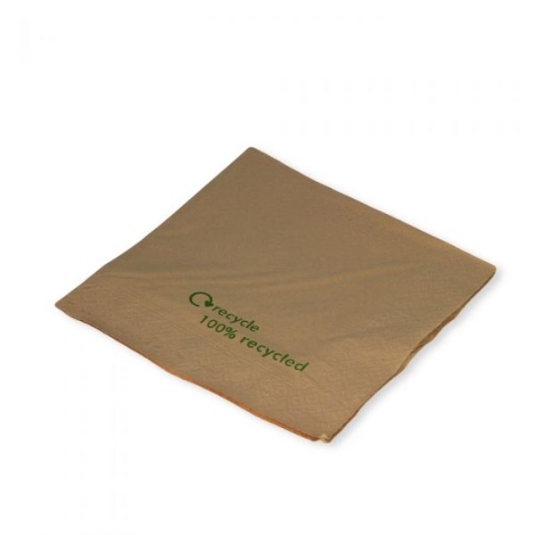 Kraft 2 Ply Napkin 33x33cm Recycle Print